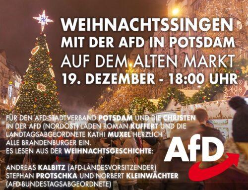 Weihnachtssingen mit der AfD in Potsdam